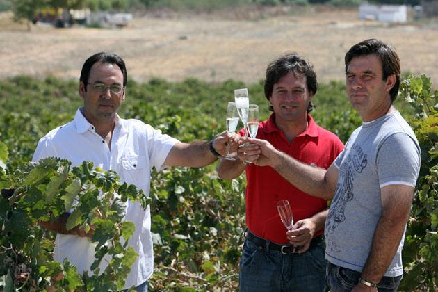 Los hermanos Tejero brindan con su espumoso en una viña