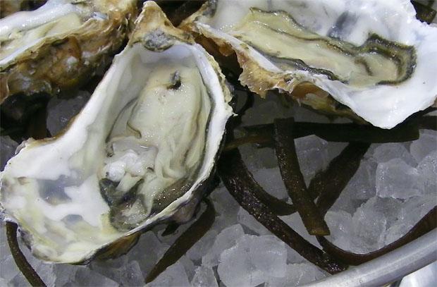 Ostiones de salinas procedentes de Chiclana, uno de los productos que se ofrecen en las jornadas de La Marea. Foto: Cosas de Comé