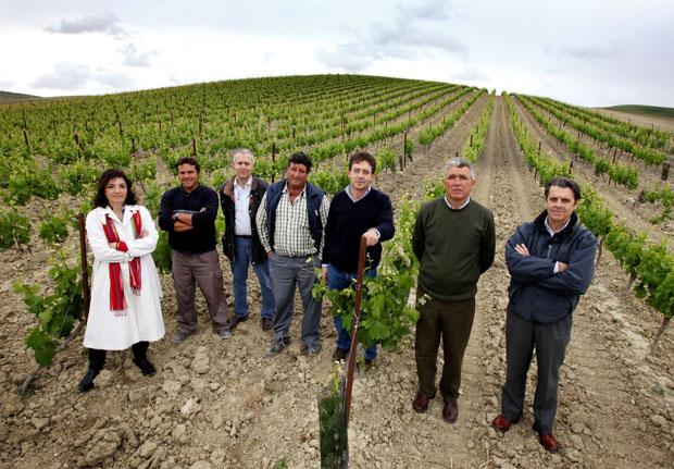 Los hermanos García junto al equipo que cultiva los vinos Cortijo de Jara. Foto: Javier Reina.
