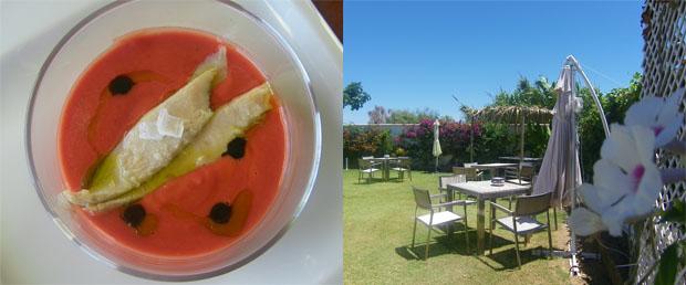 El salmorejo de remolacha con ventresca de atún, una de las tapas de El Laúl y su terraza con suelo de cesped natural. Foto: Cosas de Comé