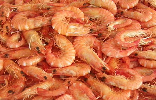 Langostinos de estero cocidos. Foto: Cosas de Comé