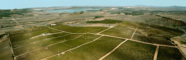 Impresionante vista aerea de la finca de Huerta de Albalá en Arcos. Foto: Cedida por Huerta de Albalá