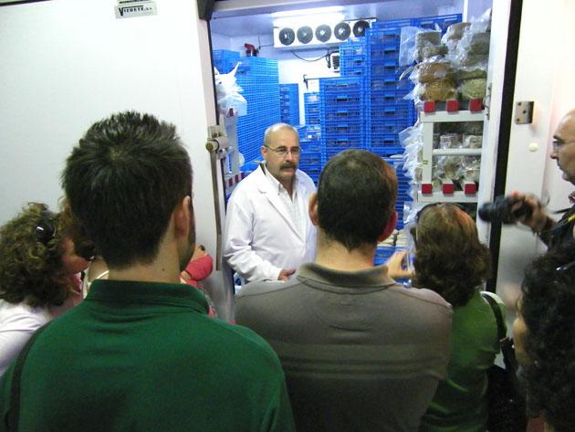 El maestro quesero Ramón Gago muestra a los visitantes la cámara donde maduran los quesos. Foto: Cosas de Comé.