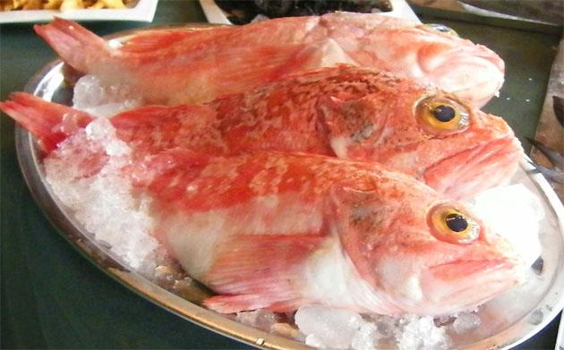 La gallineta uno de los pescados que se puede utilizar para hacer el paté de cabracho. Foto: Cosas de Comé