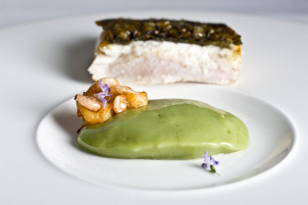 La lisa de estero, uno de los últimos productos en torno a los que está investigando el cocinero Angel León del restaurante A Poniente. Foto: Cedida por restaurante A Poniente.