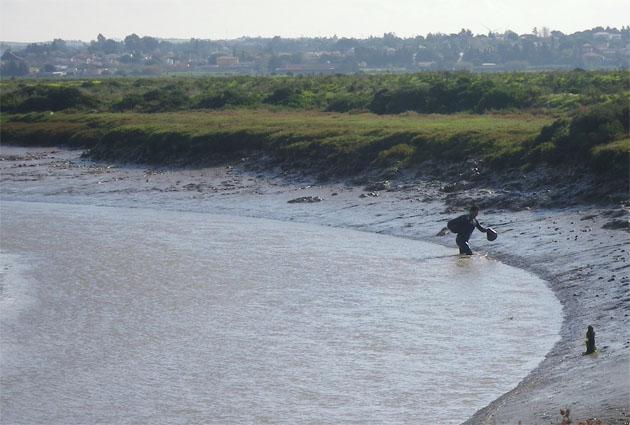 David Fernández en los caños. Se tienen que meter en el fango y en el agua para coger las coquinas. Foto: Cosas de Comé.