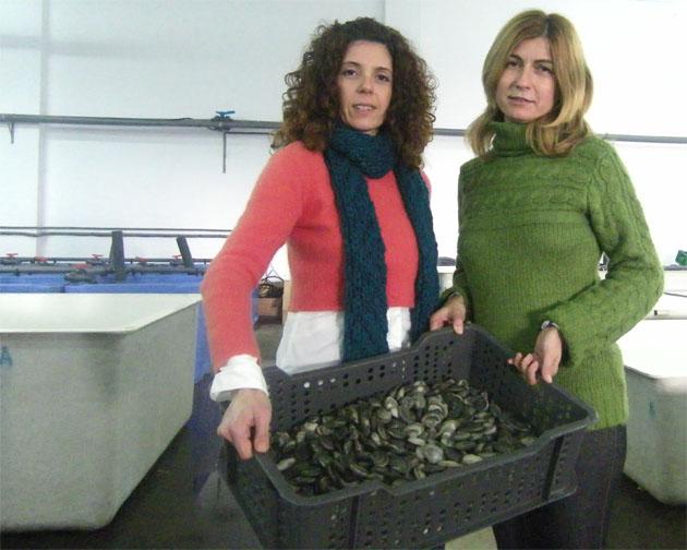 Irene Sánchez de Sardi y Ana Parradeno Jiménez en Cetárea del Sur con un lote de coquinas ya depuradas y sin riesgos sanitarios. Foto: Cosas de Comé