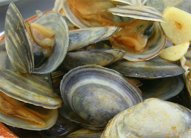 Las coquinas uno de estos mariscos considerados de segunda y que están exquisitos. Foto: Cosas de Comé.